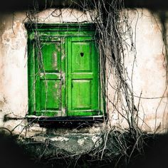 Fine Art Photograph  Window to the heart 8 x 8 green by gintta, etsy