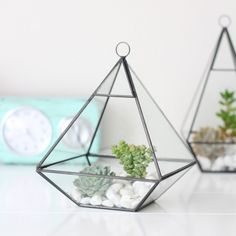 Medium Pyramid Glass Terrarium/Indoor Planter
