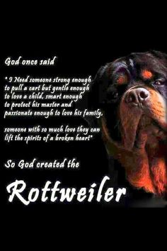 Rottweiler :) I don't do believing in God but if he were real this is true