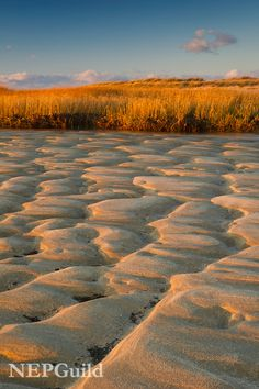 Autumn, Patterns in beach sand and golden marsh grass at First Encounter Beach on Cape Cod, Massachusetts. Credit: Mike Blanchette, New England Photography Guild