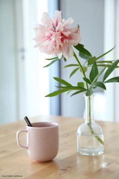 Iittala Sarjaton Letti mug in old rose. Via Valkoinen Harmaja.