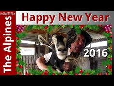 Happy New Year - Gavin, Dianne, Family, Friends, Subscribers and Fellow ...