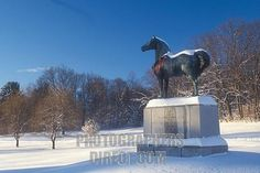 Nice Winter Beauty, Horse Farms, Vermont, Statue Of Liberty, Horses, Nice, Travel, Animals, Statue Of Liberty Facts