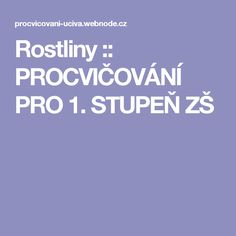 Rostliny :: PROCVIČOVÁNÍ PRO 1. STUPEŇ ZŠ School, Children, Ideas, Geometry, Young Children, Boys, Kids, Thoughts, Child