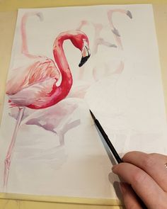Watercolor by Maria Pirogova @marysimpledesign  Process #colorful #color #watercolor #watercolorpainting #draw #drawing #drawings #sketch #sketches #sketchbook #pink #brush #brushes #art #artist #exercise #training #paper #bird #rose #process #pink #instagood #instagram #instadaily #instapic #instaart #flamingo #illustration