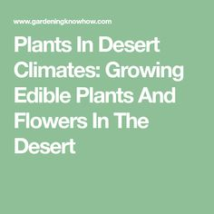 Plants In Desert Climates: Growing Edible Plants And Flowers In The Desert