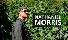 Get To Know Cannabis Activist And Scientist, Nathaniel Morris, As Seen On Weed Country™