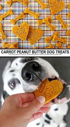homemade dog food DIY Dog Treat Recipes - Carrot and Peanut Butter Dog Treats Diy Dog Treats, Homemade Dog Treats, Healthy Dog Treats, Organic Dog Treats, Carrots And Peanut Butter, Peanut Butter Dog Treats, Dog Biscuit Recipes, Dog Treat Recipes, Vegan Dog Treat Recipe