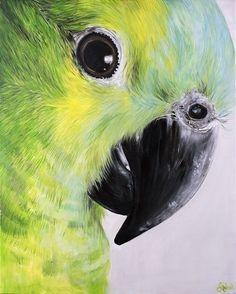 """Sticky Beak - Ltd Edition Print"" by Emma Ward. Paintings for Sale. Watercolor Pictures, Watercolor Bird, Watercolor Artwork, Wildlife Paintings, Animal Paintings, Hyperrealistic Drawing, Eye Painting, Color Pencil Art, Art Drawings"