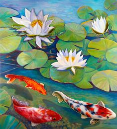 Water Lily Painting - Koi Pond by Anne Nye