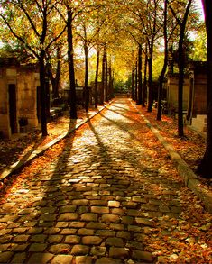 Cobblestone Path, Cemetery, Paris, France.  I love cemeteries, but this looks haunting...!
