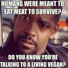 ...you are talking to a living vegan!