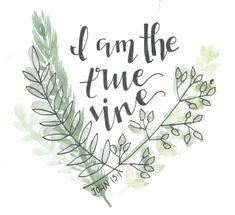 I am the true vine // watercolor bible verse john Framed Art Print by ashymd - Vector Black - MEDIUM Bible Verse Painting, Bible Art, Bible Verses, True Vine, Inspirational Bible Quotes, Bible Verse Wallpaper, Rock Painting, Artsy Fartsy, Framed Art Prints