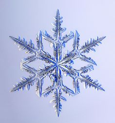 snowflakes under the microscope | Very cool photos of snowflakes under a microscope General: Discussion