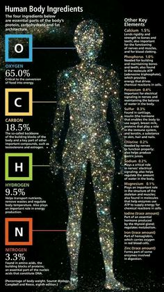 Chemical breakdown of the human body. We are made of what the universe gives. Our entire composition comes from the cosmic dust of exploding stars. You are literally the stuff of stars. Cosmos, Life Science, Science And Nature, Science Facts, Star Science, Teaching Science, Earth Science, Pseudo Science, Applied Science