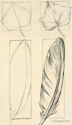 Лист и перо
