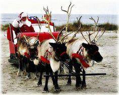 Santa in Pensacola at the beach