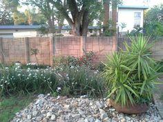 www.designergardenlandscaping.co.za Garden, Plants, Garten, Lawn And Garden, Gardens, Plant, Gardening, Outdoor, Yard