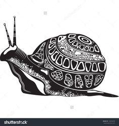 zentangle snail - Google Search
