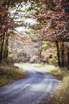 Autumn Bright & Beautiful