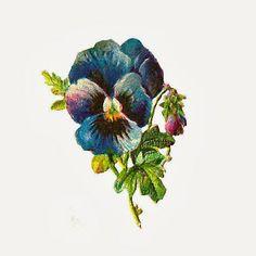 Antique Images: Free Flower Clip Art: Shabby Blue Pansy Graphic Digital Scrap