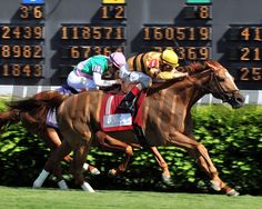 Wise Dan wins the Woodford Reserve (gr. I). Dave Harmon Photo