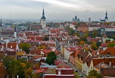 The View of Tallinn's Old Town from St. Olav's Church www.thisoffscriptlife.com #tallinn #estonia #baltics #balticstates #towers #views #travel