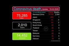 CORONAVIRUS,VIRUS CORONA,CORNA VIRUS English Love Quotes, Nucleic Acid, Mortality Rate, Shortness Of Breath, First Humans, How To Become, Death, Words, Corona