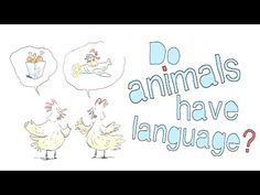 "Excellent TED-Ed Video: ""Do animals have language?"" 