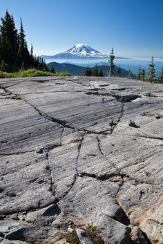 Glacier-Gouged Rock and Mount Adams from the Pacific Crest Trail / Glacier-scraped rock, showing parallel gouges, with Mount Adams in the distance, along the Pacific Crest Trail in the Goat Rocks Wilderness, Gifford Pinchot National Forest, Cascade Mountains, Washington State, USA