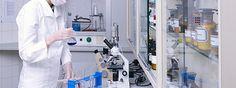 Lanzan convocatoria de becas para las mujeres en la ciencia