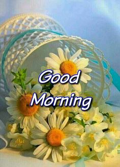 Beautiful good morning images with flowers Good Morning Images Flowers, Good Morning Nature, Good Morning Beautiful Images, Good Morning Images Download, Cute Good Morning, Good Morning Coffee, Morning Pictures, Good Morning Greetings, Good Morning Wishes