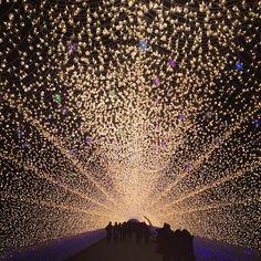 神戶 光之祭典