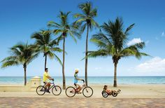 hollywood florida broadwalk pictures - Yahoo Image Search Results