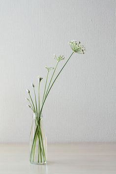 flower arrangement - simple & elegant #wabisabi