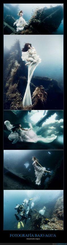 La magia de la fotografía subacuática - Simplemente mágica   Gracias a http://www.cuantarazon.com/   Si quieres leer la noticia completa visita: http://www.estoy-aburrido.com/la-magia-de-la-fotografia-subacuatica-simplemente-magica/