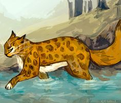 Leopardstar by Ospreyghost13.deviantart.com on @deviantART