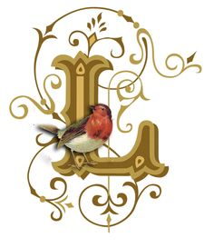 383 Best L Images Alphabet Letters Initials Letter L