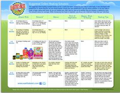 Baby Food Introduction Chart from Earth's Best Organics