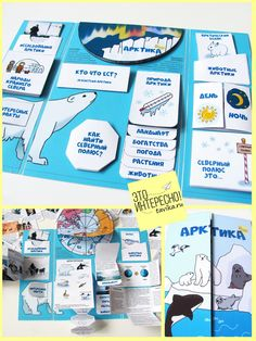 Лэпбук Арктика и Северный полюс School Presentation Ideas, Bible Doodling, Learning English For Kids, Reading Projects, Gymnasium, School Posters, Bullet Journal Ideas Pages, Science Lessons, Study Notes