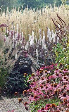 My Favorite Plant Combinations 30 (My Favorite Plant Combinations design ideas and photos Prairie Planting, Prairie Garden, Garden Cottage, Seaside Garden, Planting Plan, Back Gardens, Outdoor Gardens, Australian Garden, British Garden