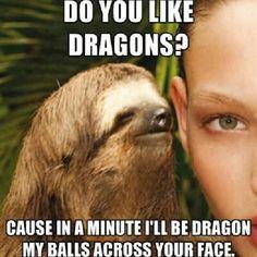 c84edad39a11ac75487da94592abb9ae funny sloth sloth memes pin by ellie franks on don't laugh pinterest adult humor,Weirdo Memes