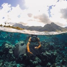 #GoPro Featured Photographer – Mark Healey (aka @donkeyshow)  About the Shot: Everyone that lives in #Tahiti is so warm and welcoming, especially when they find out you're from Hawaii! I came out to this amazing French Polynesian island with my girlfriend to work on a stunt dive and ended up meeting a pretty awesome #Polynesian dude during my travels named Wilfred. Wilfred has an awesome rapport with the local fish, #stingrays, and #sharks in the area and loves taking people out on his boat…