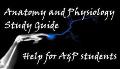 Great website with creative strategies and activities for anatomy and physiology