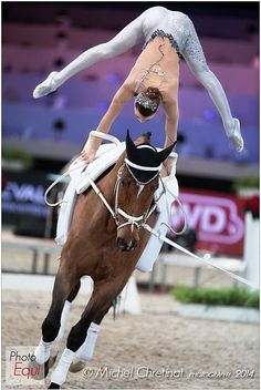 Photo : © Michel Chretinat - Photography 2013 - Equestrian Sports in Pictures Horse Story, Trick Riding, Funny Horses, Sports Pictures, Vaulting, Show Horses, Horse Riding, Horseback Riding, Beautiful Horses