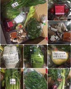 おいしっくすの野菜づくしディナー|SHOOP+FACTORY(シュープ・ファクトリー)@オーナーブログ