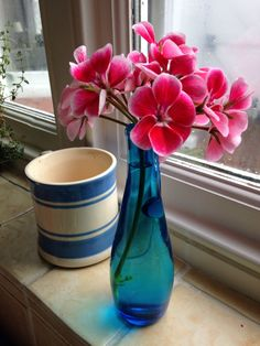 Kitchen window blues + pinks