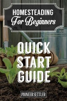 Check out Homesteading For Beginners | Your Homestead Quick Start Guide at http://pioneersettler.com/homesteading-beginners-homestead-quick-start-guide/