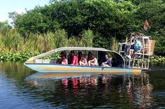 Adventure filled tours through the Everglades!