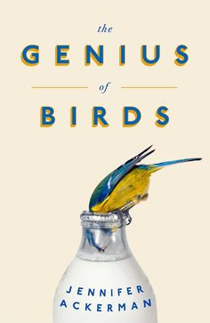 The Genius of Birds, book cover designed by Jack Smyth. Winner of ABCD – Non-fiction